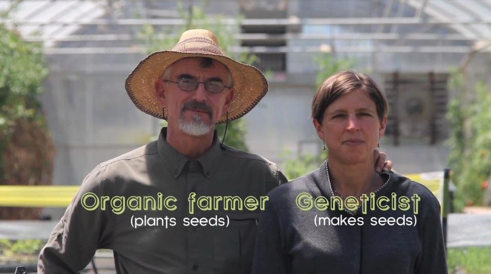 Come (invece) vorrei l'Agricoltura biologica
