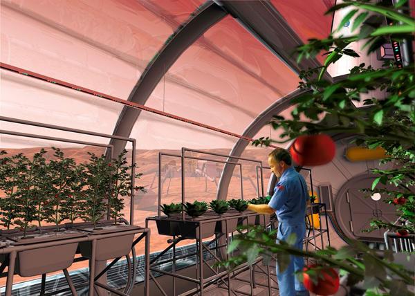 Agricoltura extraterrestre: è possibile coltivare fuori orbita?