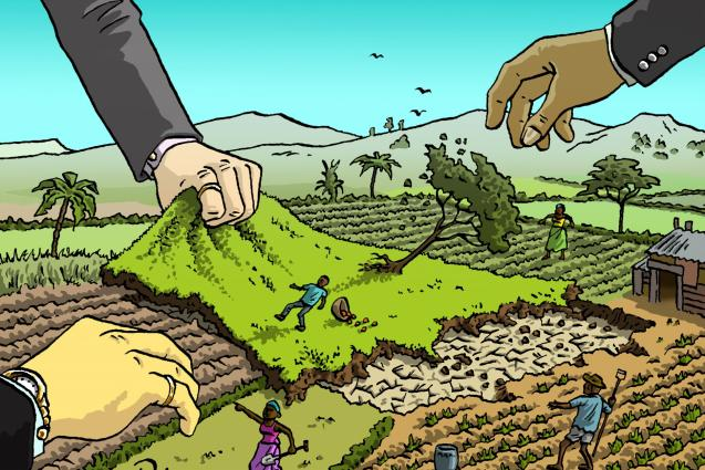 Il land grabbing e gli investimenti in agricoltura