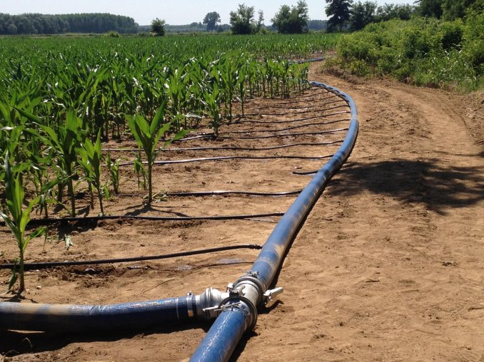 Irrigazione a manichetta