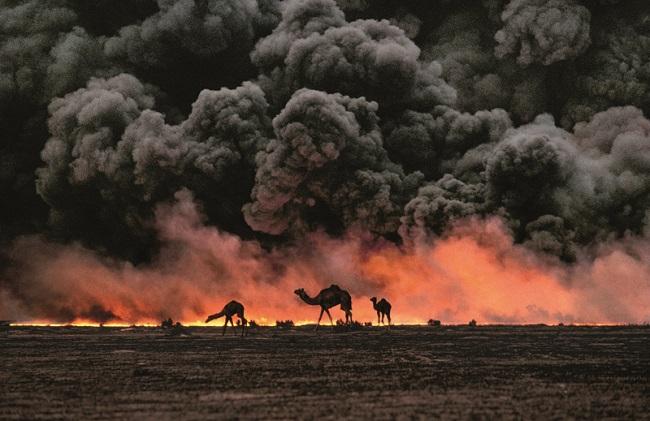 Giornata Internazionale per la Prevenzione dello Sfruttamento dell'Ambiente in Tempo di Guerra e di Conflitti Armati