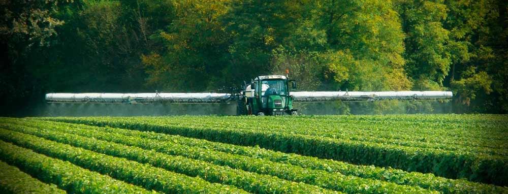 Il complesso processo di autorizzazione dei prodotti fitosanitari