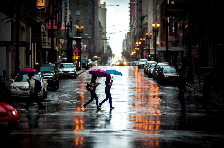 I Rain Gardens per una gestione efficiente delle acque piovane in città