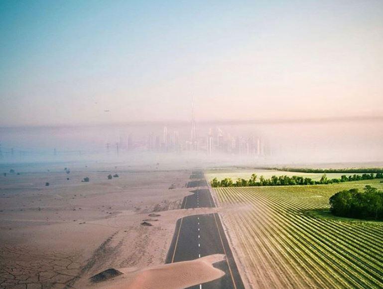The great green wall: un'azione concreta contro la desertificazione