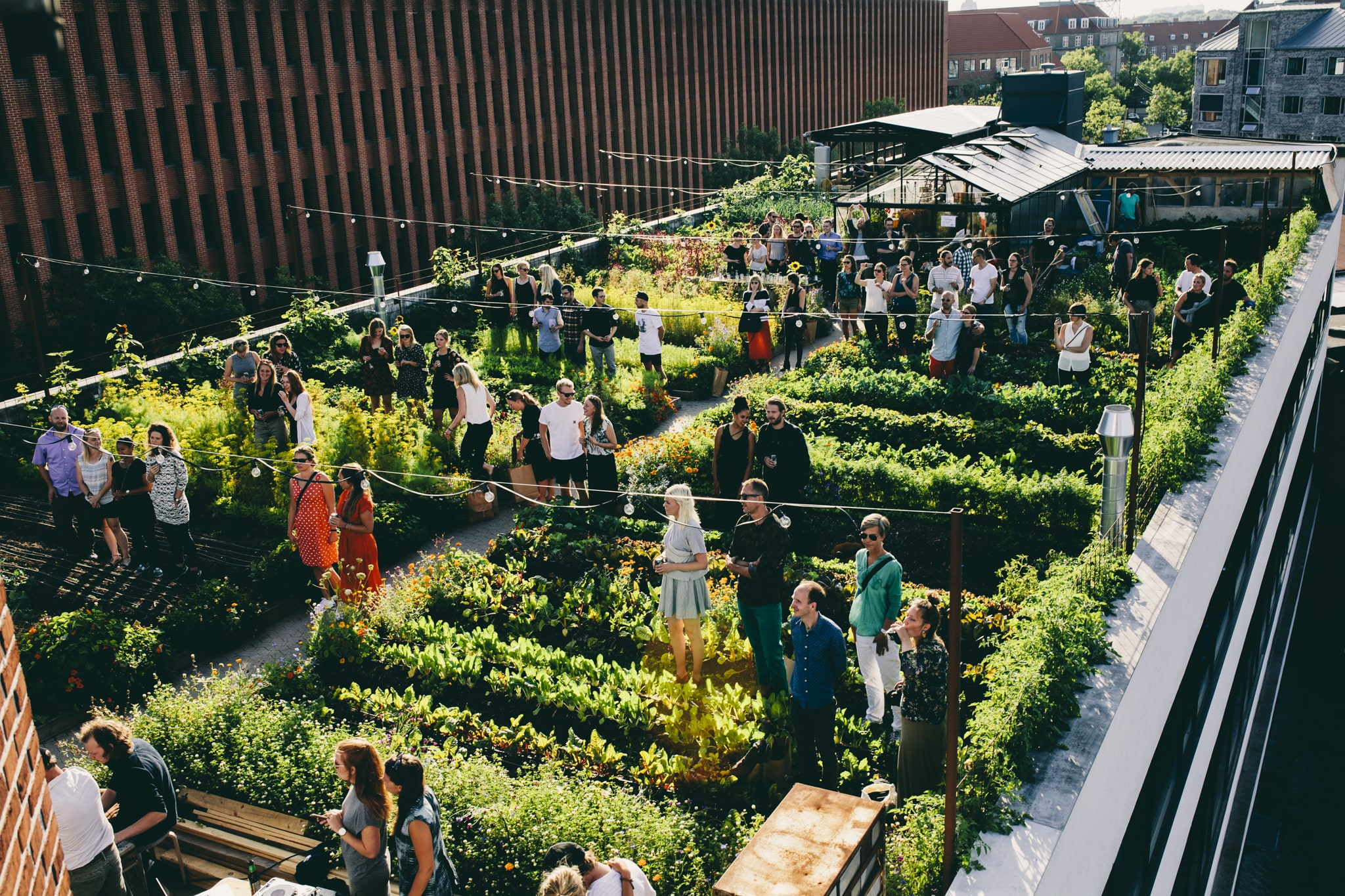 Urban Farming: l'agricoltura in città